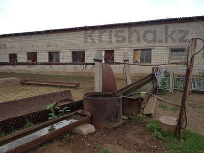 Производство, сельское хозяйство, Чапаев за 120 млн 〒 в Уральске — фото 2