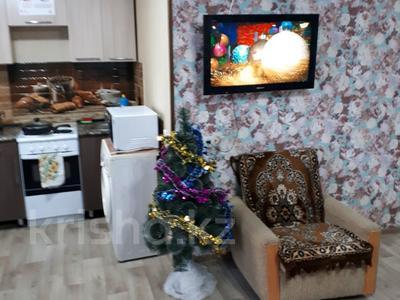 1-комнатная квартира, 37 м², 4 эт. посуточно, Ленина 15 за 6 000 ₸ в Семее — фото 11