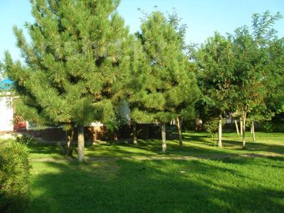 зона отдыха на Капчагае. за 170 млн 〒 в Капчагае — фото 11