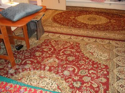 3-комнатный дом, 75 м², 3.17 сот., Болтирик Шешена за 13 млн 〒 в Алматы, Жетысуский р-н — фото 14