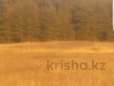 Участок 10 га, Щучинск за 25 млн 〒 — фото 3