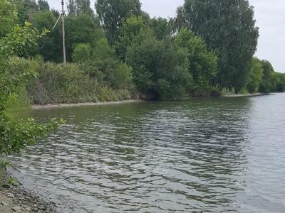 Дача с участком в 10 сот., Усть-Каменогорск за 5.5 млн ₸ — фото 15