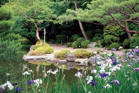 Новости: В центре Алматы разобьют японский сад