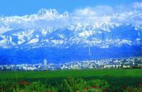 Новости: В Алматы выявлено 12 тыс. нарушений земельного законодательства