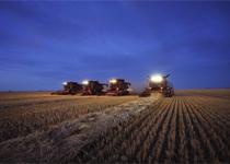 Статьи: Работа над законопроектом об использовании земельных участков в РК продолжается