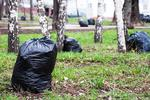 Новости: Рощу Баума, Медеу и Сайран очистят от мусора