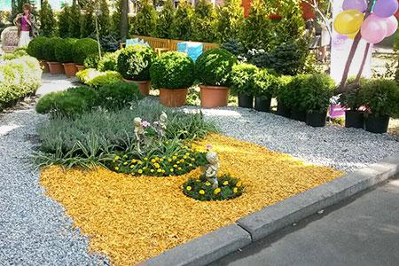 Новости: В Алматы начался фестиваль «Шоу садов»
