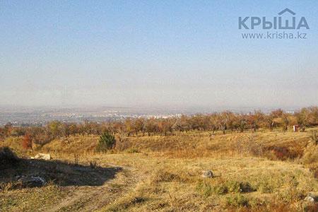Новости: Бизнесмен: Заучасток под ТРЦ вНаурызбайском районе просят$3млн