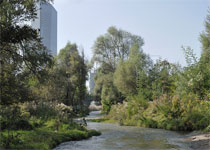 Новости: В Жетысуском районе очистили речки