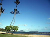 Новости: Японский миллиардер сдал свои особняки бедным гавайцам