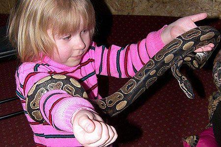 Новости: Контактный зоопарк на дому