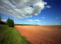 Новости: Новые нормы в отношении земель сельхозназначения