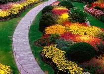 Новости: Алматы украсили цветочными скульптурами