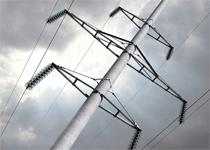 Новости: В Актобе крысы угрожают подаче электроэнергии
