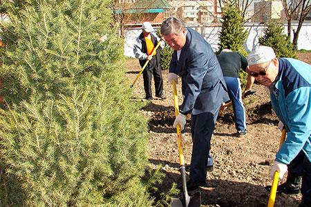 Новости: За день в Алматы высадили 4 000 деревьев (фото)