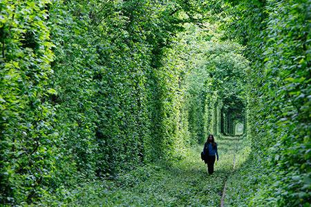 Новости: Парки Алматы соединят зелёными коридорами