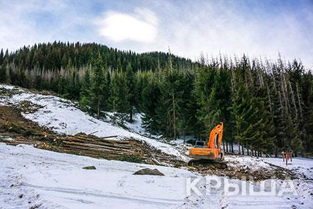 Новости: В Бутаковском ущелье вырубят более двухтысячелей