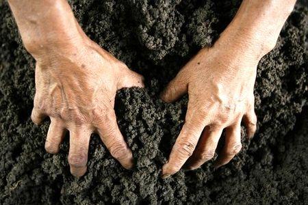 Новости: Под Астаной продолжают захватывать земли