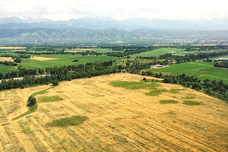Новости: ВРКмогут изменить условия изъятия земель длягоснужд