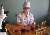 Новости: На присоединённых к Алматы землях проверяется санэпидемситуация