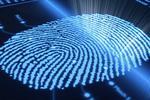 Новости: Госуслуги вЦОНах станут доступны поотпечатку пальца