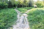 Новости: Парк «Южный» в Алматы обретёт новый облик