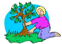 Новости: ВАлматы осенняя посадка деревьев