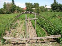 Статьи: Если участок находится во временном землепользовании