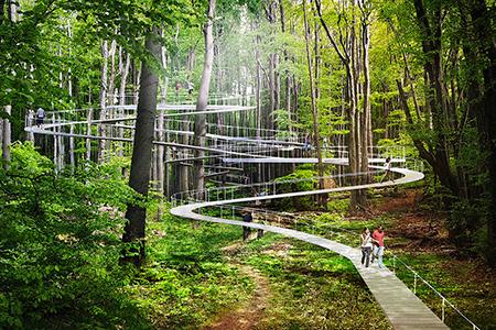 Новости: Дизайнеры представили проект городского парка будущего