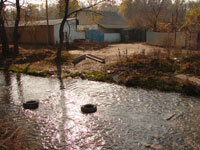 Статьи: В водоохранных зонах города будет изъято более 1 000 земельных  участков