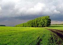 Новости: В Алматинской области идут проверки участков ИЖС