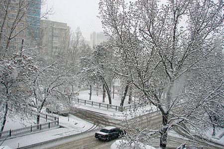 Новости: Алматы засыпало снегом (фото)
