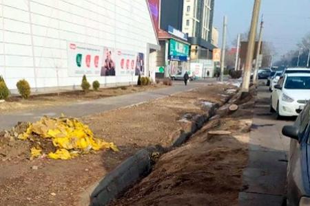 Новости: Вырубка деревьев наТолеби в Алматы: полиция переквалифицировала дело