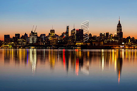 Новости: Самый высокий аттракцион в мире построят вНью-Йорке