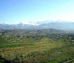 Новости: Выявлены факты нарушений при распределении земельных участков в Алматинской области