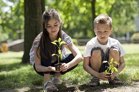 Новости: В Астане в честь новорождённых будут высаживать деревья
