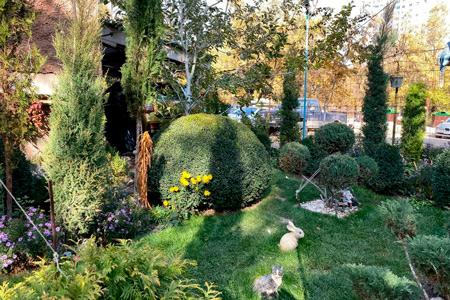 Новости: ВАлматы выберут самый зелёный двор