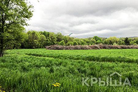 Новости: В Алматы готовят проект реконструкции Ботанического сада