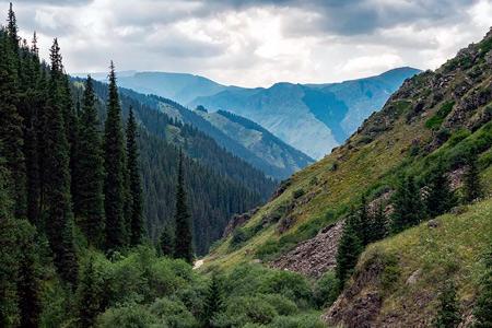 Новости: Тендер поаренде земель Иле-Алатауского парка отменили