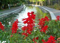 Новости: Малая Алматинка: когда «включат» воду?