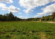 Новости: Проблема неиспользуемых сельхозучастков может быть решена