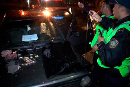Новости: ВАлматы задержали пятерых домушников