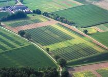 Новости: Бизнесмены предлагают публиковать в сети списки свободных земельных участков