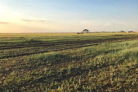 Новости: ВАстане намерены внедрить блокчейн для регистрации земельныхучастков