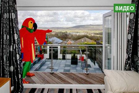 Новости: Попугай-риелтор продаёт квартиру вВеликобритании