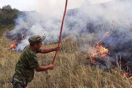 Новости: Пожар в горах Алматинской области: погибли три человека