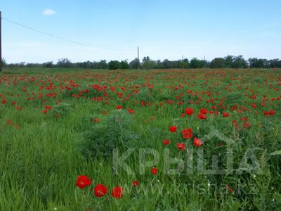 Участок 800 соток, Алматинская обл. за 15 млн 〒 — фото 3