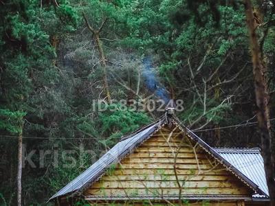 17-комнатный дом, 325 м², 130 сот., Кызылжарский район за 180 млн 〒 в Петропавловске — фото 9