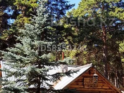 17-комнатный дом, 325 м², 130 сот., Кызылжарский район за 180 млн 〒 в Петропавловске — фото 12