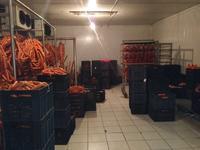 Колбасный завод